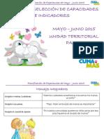 Planificacion Mayo Junio