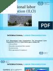 International Labor Organization (ILO)