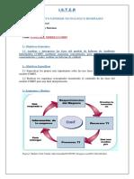 Fases Del Modelo Cobit