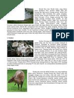 Tugas Artikel Binatang