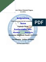 Didáctica Especial de La Matemática TRABAJO FINAL