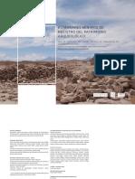 Manual situs.pdf