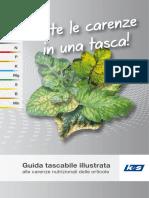 Manuale Carenze Orticole Compresso1