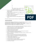 bicicleta ecologica.docx
