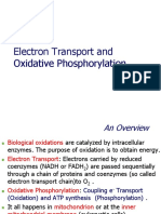Electron Transport OK