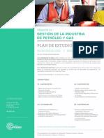 pe-mo-gestion-de-la-industria-de-petroleo-y-gas.pdf