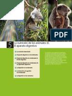 nutricion_animales.pdf