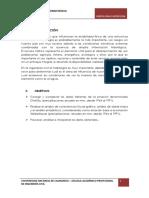 analisisdeconsistencia-IMPORTANTE.docx