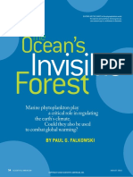 The Ocean's Invisible Forest
