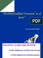 5.Morbimortalidad Perinatal en el Perú.ppt