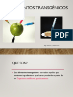 Transgenicos 2.ppt