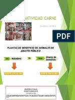 Clase 3. Normatividad Carne