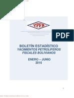 Boletinestadistico_enerojunio2010