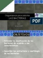 las bacterias.ppt