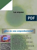 arqueobacteria 2