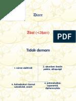 algoritma diare