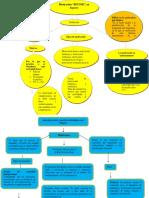 mapa conceptuales.docx