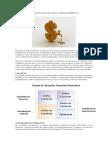 Flujo de Efectivo Según Niif Para Pymes