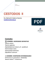 Cestodos II Oct 2017