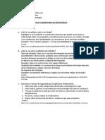 PREGUNTAS DE SEGURIDAD Y LABORATORIO METALURGIA - UNT