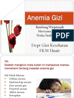 Pgm Anemia Gizi 1732012