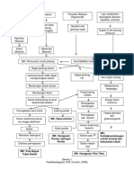 Patoflowdiagram CHF