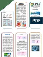 Trìptico Biotecnologìa