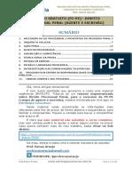 APOSTILA-RESUMO-PC-PE-agente-PROCESSO-PENAL-PÚBLICO-EXTERNO.pdf