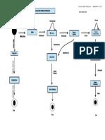 DIAGRAMA ESTADO PROCESO PANELERO (2) (1).pdf