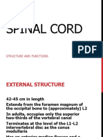 15 Spinal Cord External Features