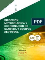 Máster en Dirección Metodológica y Coordinación de Cantera y Equipos de Fútbol