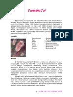 escherichia-coli2.pdf