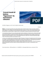 Trovati Fossili Di Balena _ingannata_ Da Mutamenti Climatici - Repubblica