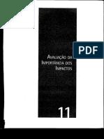 Capítulo 11 - Avaliação da Importância dos Impactos .pdf