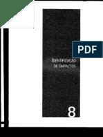 Capítulo 8 - Identificação de Impactos .pdf