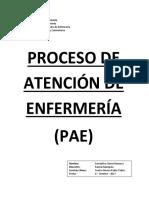 Formato Pae