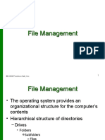 filemgmt ppt-090223203633-phpapp01