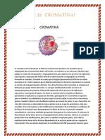 Qué Es Cromatina