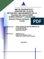 INFORME DE DIAGNOSTICO CALIDAD DE AGUA SOBRE CUENCA PARCOY Y LAGUNA DE PIAS.pdf