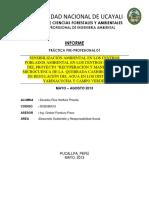 Informe practica Sensilización Ambiental
