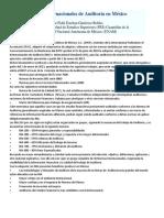 Normas Internacionales de Auditoría en México