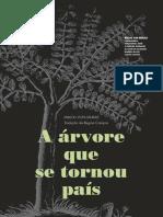 2006 Revista Todos Os Usos Do Pau Brasil