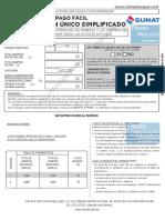 Guia-pago-RUS-Formulario-Rellenable.pdf