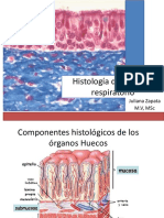 histologadelsistemarespiratorio-140406191210-phpapp01
