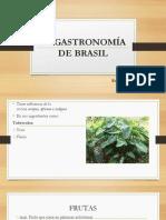 La Gastronomía de Brasil