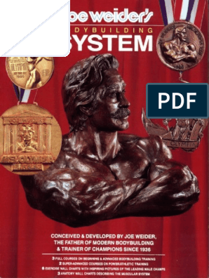 Joe Weider S Bodybuilding System Weight Training Physical Exercise