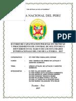 Pnp Armas Letales Monografia