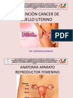 cancerdeuteroeli-110320214350-phpapp01