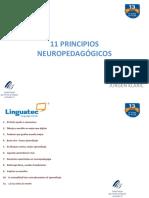11 PRINCIPIOS NEUROPEDAGÓGICOS