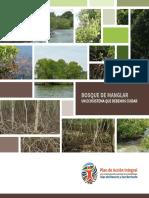 bosque-de-manglar-un-ecosistema-que-debemos-cuidar.pdf